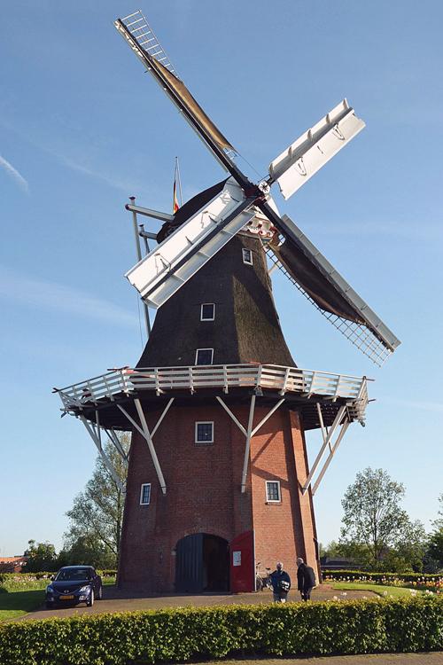 Zeldenrust, Dokkum, Foto: Martijn Scholtens (4-6-2013).