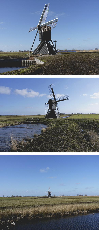 Roekmole, Goëngahuizen, Foto's: Willem Jans (5-3-2011).