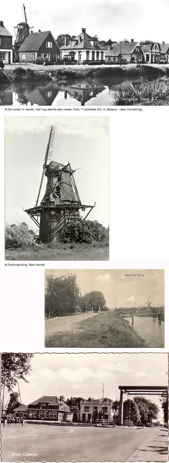 De Heidebloem, Erica, Foto: n.b. (verzameling Henk Hilbrands)