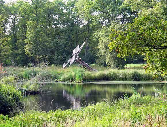 (Bollenveen), Zeijen, Foto: Dick Stada (17-8-2003).