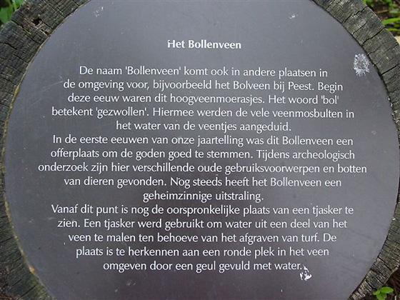 (Bollenveen), Zeijen, Foto: Harmannus Noot (8-6-2004).