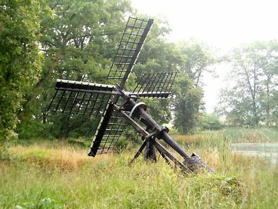 (Bollenveen), Zeijen, Foto: Michiek Regelink (20-7-2005).