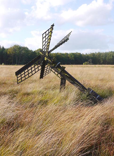(paaltjasker), Grolloo, Foto: Matthieu Hoogduin (29-9-2012).