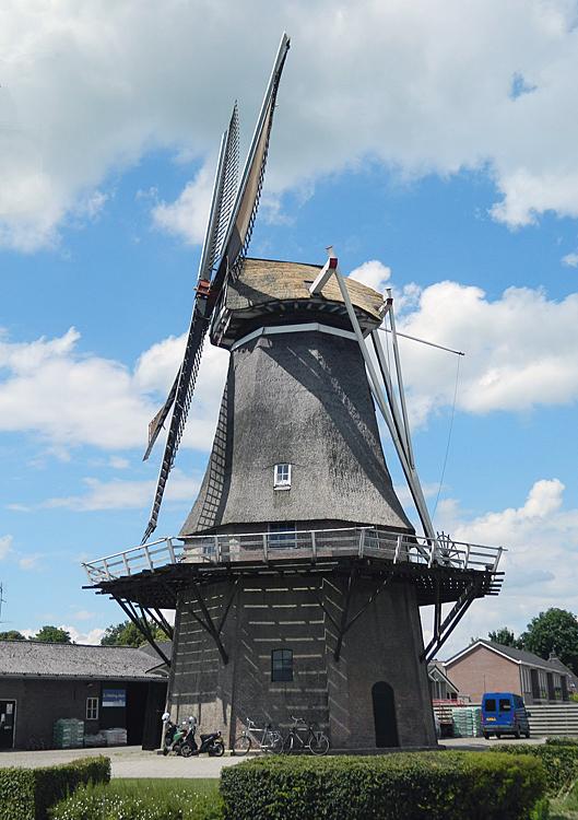 De Hoop, Sleen, Foto: Vincent Mepschen (7-7-2012).