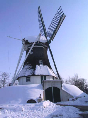 De Hondsrug, Weerdinge, Foto: Menno de Jong (5-3-2007)