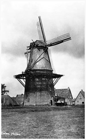 Jan Pol, Dalen, De molen omstreeks 1955. De stelling is erg slecht en het wiekenkruis aangevreten en deels uitgezakt.  Foto: n.b. (verzameling Rob Pols).
