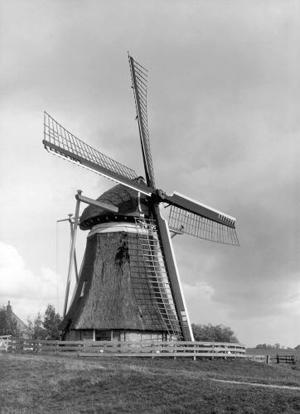 De Rietvink, Nijetrijne, De molen nog helemaal vrij in het landschap in 1934!  Foto: ? (verzameling Rob Pols).