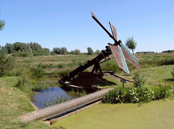 (tjasker), Grou (Grouw), Foto: W. Jans (2005).