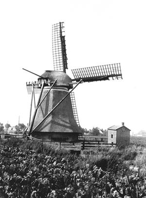 De Eendracht, Kimswerd, De Eendracht nog met oud-Hollands op beide roeden.  Foto: Anja Hoogduin (26-7-1980).