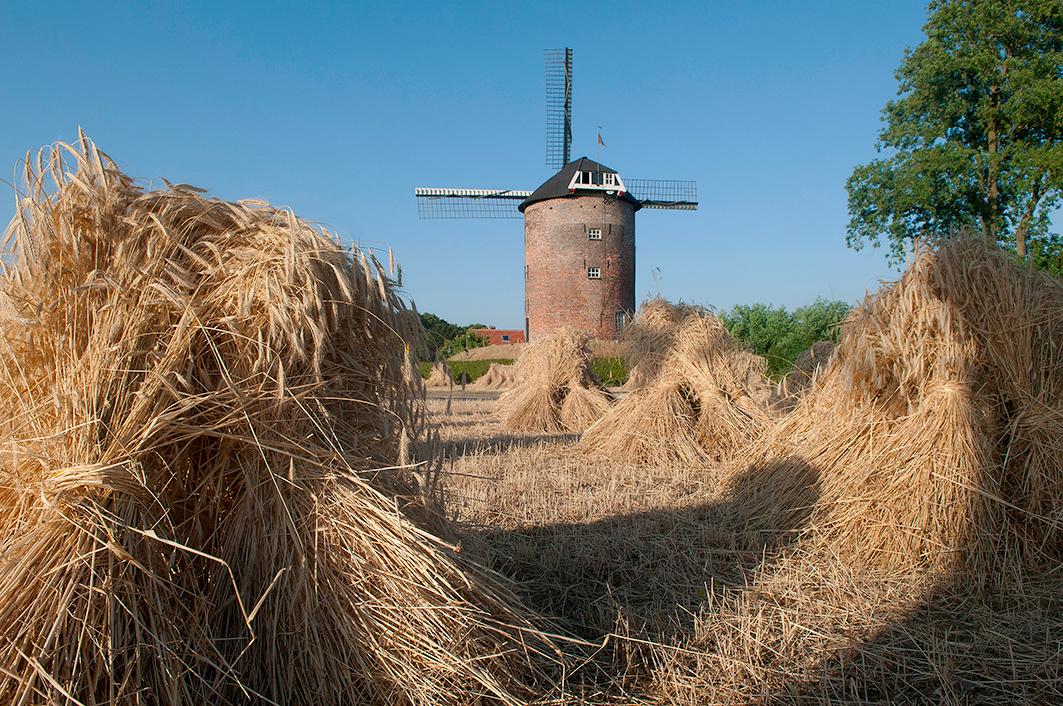 De Buitenmolen, Zevenaar, Foto's: Donald Vandenbulcke (15-7-2009).