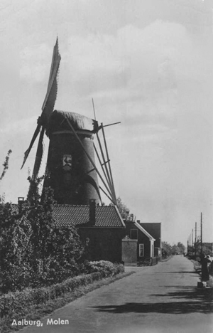 De Twee Gebroeders, Wijk en Aalburg, De malende Twee Gebroeders vele jaren her.  Let ook eens op het galghout op de staart.  Foto: ? (verzameling Rob Pols).