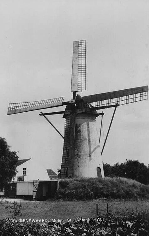 Sint Antonius Abt, Borkel, De molen nog met Dekkerwieken.  Foto n.n. (ingezonden door Arie Hoek).