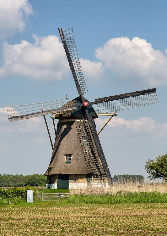 Zuidhollandse Molen, Hank, Foto: Bram van Broekhoven (27-5-2013).