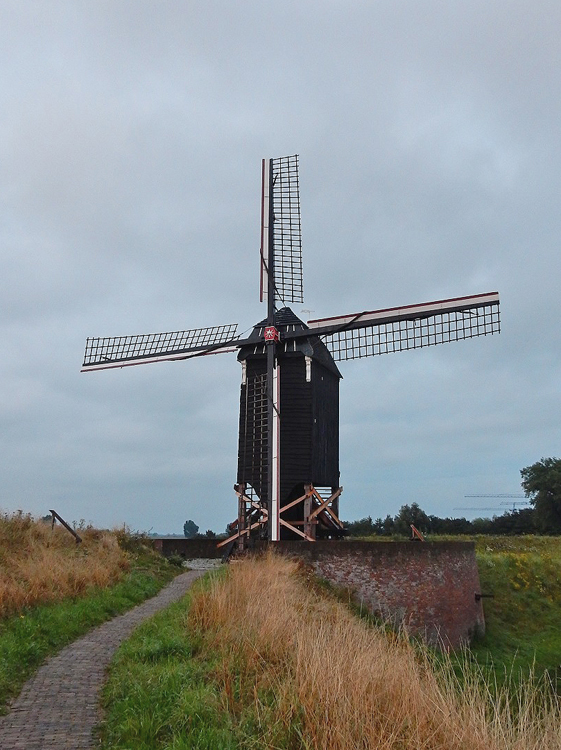Nr. II, Heusden, In de kruisplaten en in een van de steekbanden is de bonte knaagkever aangetroffen, voor alle zekerheid is de kast gestut.  Foto: Tony Hop (6-8-2014).