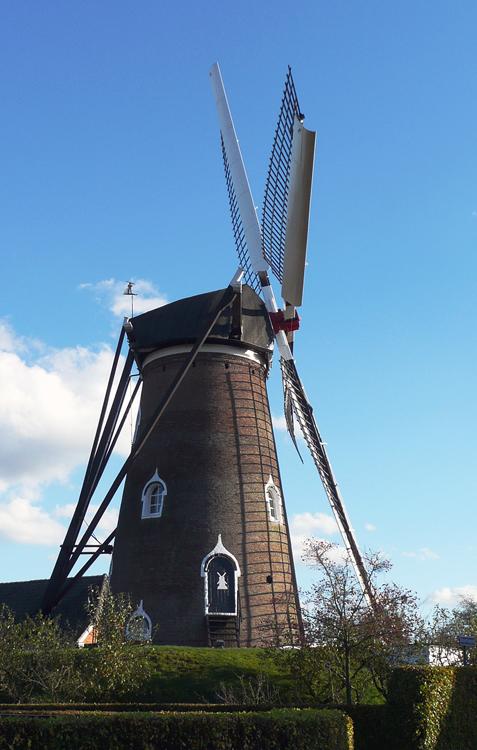 De Doornboom, Hilvarenbeek, Foto: Gerard Barendse (30-10-2013).