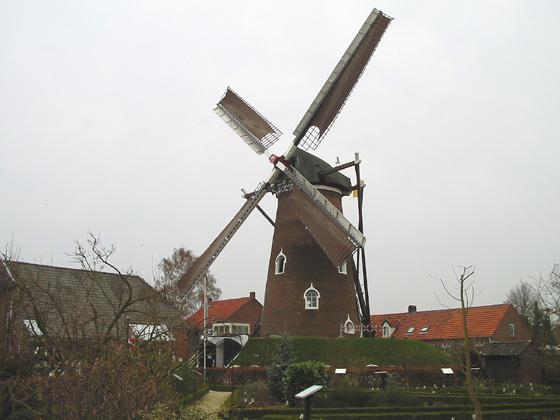 De Doornboom, Hilvarenbeek, Foto: Rob Pols (15-4-2006).