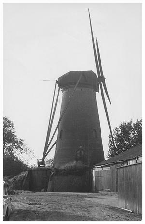 De Toekomst, Hoeven, De vervallen molen met kale roeden rond 1960.  (verzameling Ton Meesters).
