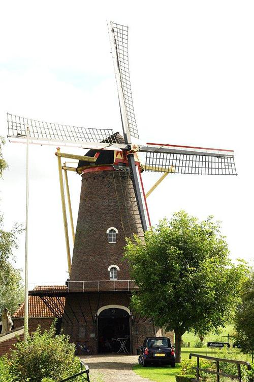 Zeldenrust, Hooge Zwaluwe, Foto: Frits Kruishaar (1-9-2012).