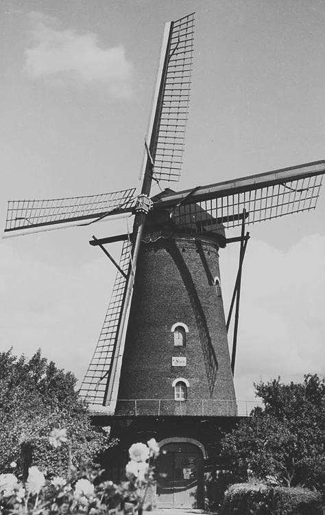 Zeldenrust, Hooge Zwaluwe, De Zeldenrust rond 1940.  Foto: verzameling Tony Hop.