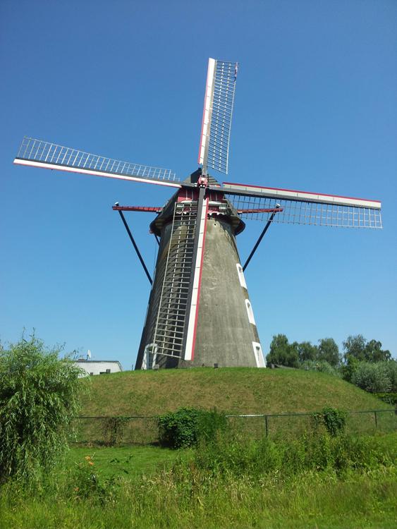 Vogelenzang / Bettmolen, Lieshout, Foto: Mario Collombon (7-7-2013).