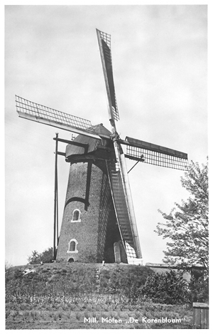 De Korenbloem, Mill, De Korenbloem nog in bedrijf rond 1950.  Foto: ? (verzameling Ton Meesters).