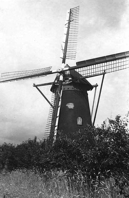 De Vooruitgang, Oeffelt, Foto: ca. 1950. Coll. Dick Zweers.