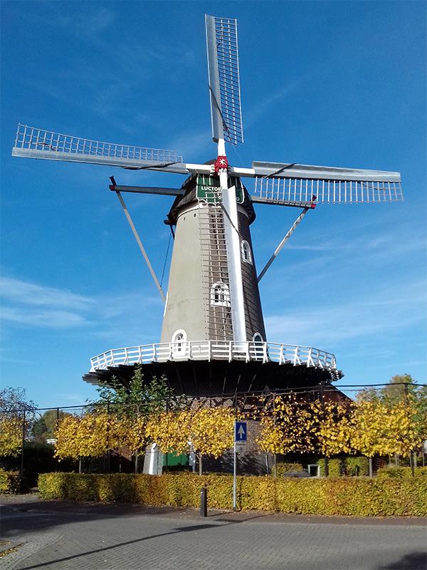 Luctor et Emergo, Rijkevoort, Foto: Marcel van Nies (9-8-2016). Momenteel staat de molen er nogal kaal bij door de restauratie.