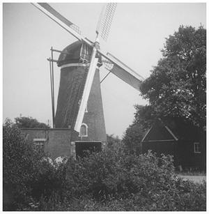 De Heimolen, Sint Hubert, Foto: ± 1965 (verzameling Ton Meesters).