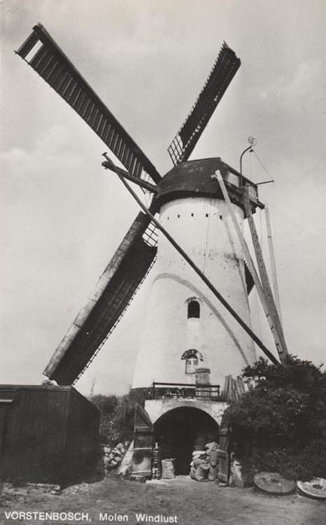 Windlust, Vorstenbosch, Een heerlijk plaatje van een werkpaard! De molen met zelfzwichting, Van Busselwieken. De lange spruit is een oude molenroede, evenals de staart. En de zakken graan die staan te wachten...  Ansichtkaart ca. 1950, coll. Arie Hoek.