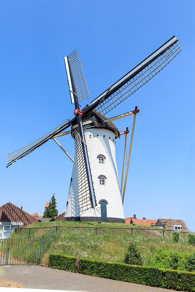 Windlust, Vorstenbosch, Foto: René Speur (6-8-2009)
