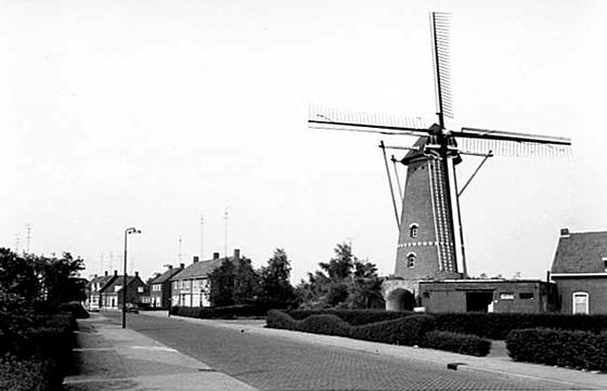 Zilster Molen, Veldhoven-Zeelst, Foto: n.b. (verzameling Pieter Kerkhofs).