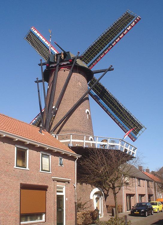 Fleur, Zevenbergen, Foto: Marcel Stroo (25-3-2012).