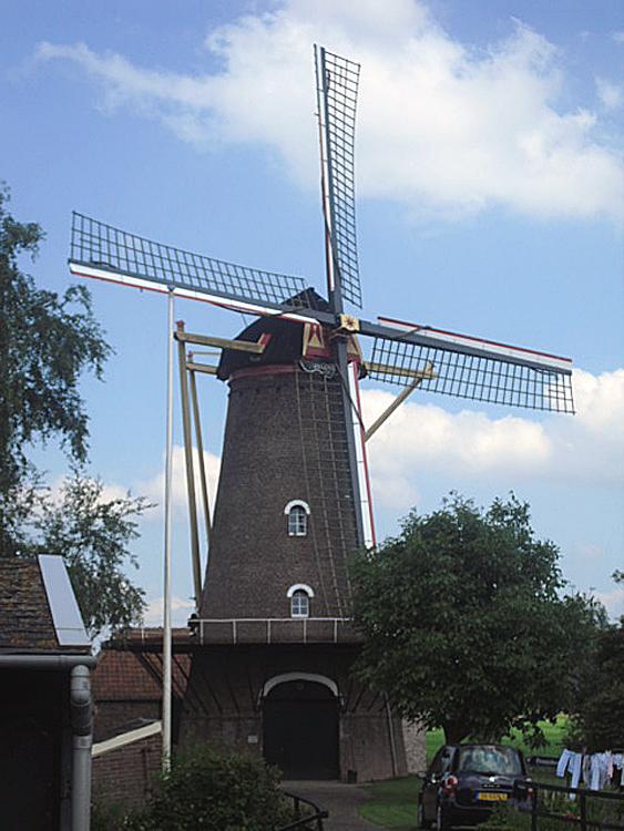 Zeldenrust, Hooge Zwaluwe, Foto: Tony Hop (6-7-2012).