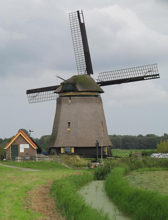 Bosmolen, Egmond aan den Hoef, Foto: Piet Glasbergen (2-9-2014).