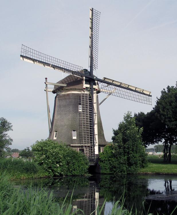 De 1100 Roe , Amsterdam-Slotermeer, Foto: Piet Glasbergen (17-6-2013).