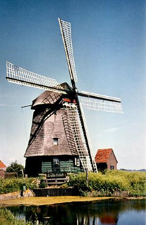 Philisteinse Molen, Bergen, Op deze opname is de molen al geruime tijd buiten gebruik. De zeilen en windborden zijn verwijderd. Het hekwerk van het wiekenkruis is wit geschilderd.  Foto: Eric Zwijnenberg (1964).