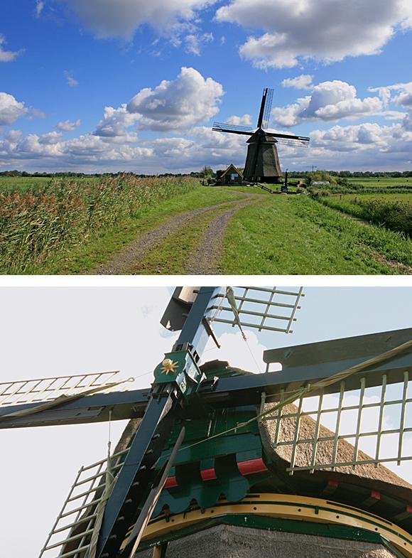 Bosmolen, Egmond aan den Hoef, Foto's: Ton Koorevaar (1-9-2011).