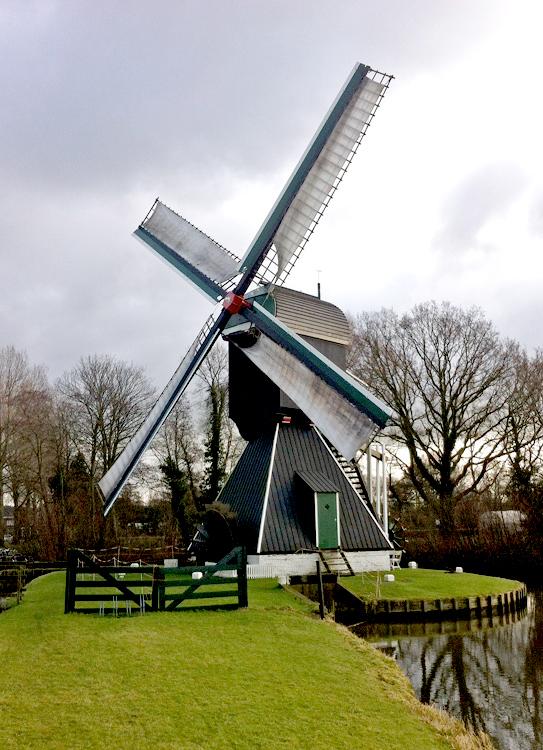 Schoterveense molen, Haarlem, Foto: Pedro Germes (1-2-2015).