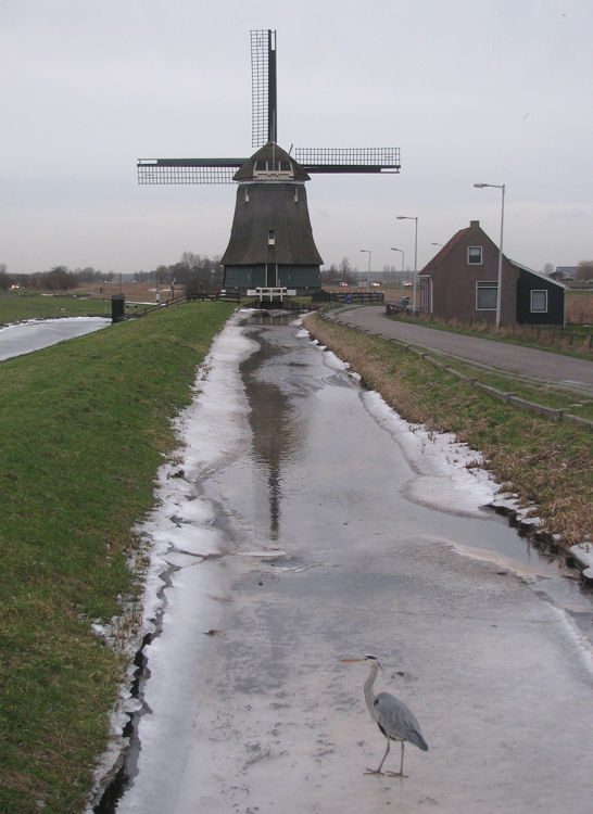 De Kathammer, Katwoude, Foto: Piet Glasbergen (28-1-2013).