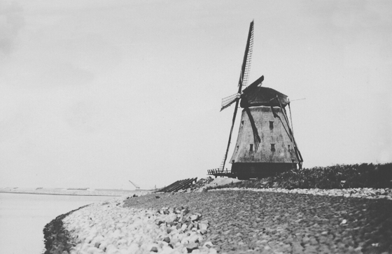 De Herder, Medemblik, De zichtbaar forsere voorganger van de huidige molen.  Foto: J. Groot, 26-01-1930. Opname uit de verzameling van Nico Jurgens.