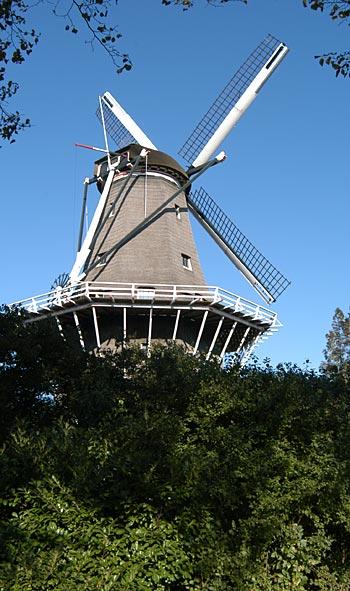 De Bloem, Amsterdam, Foto: BB (17-10-2003).