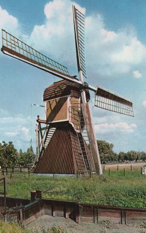 Buitenwegse Molen, Oud-Zuilen, De Buitenwegse wipmolen nog met het Dekkersysteem. Bemerk ook de typische Utrechtse spitse kapvorm (vergelijk de foto erboven).  Foto n.n. (datum onbekend), coll. Arie Hoek.