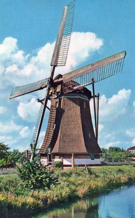 Westbroekse Molen, Oud-Zuilen, De molen nog met het Dekkersysteem. Foto: n.n. (datum onbekend), coll. Arie Hoek.