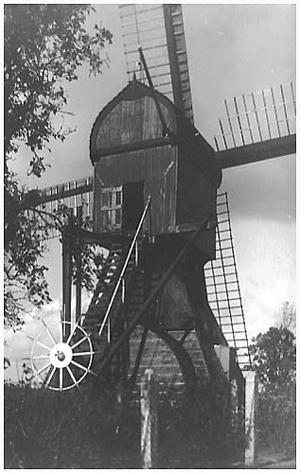 De Trouwe Wachter, Tienhoven, Op deze oude afbeelding is de molen nog zwart geteerd! Bemerk ook de oude Utrechtse spitse kap.  Foto: n.b. (verzameling Rob Pols).