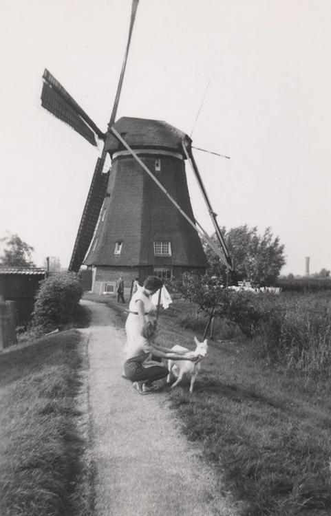 Overwaard Molen No.1, Kinderdijk, Foto ingezonden door Arie Hoek (augustus 1961).