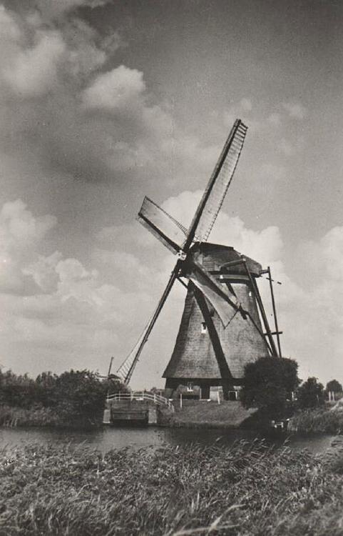 Overwaard Molen No.3, Kinderdijk, Vermoedelijk juni 1943. De molen maalt op het wzw.  Op de achtergrond De Hoge Molen van polder Nieuw-Lekkerland. (ingezonden door Arie Hoek).