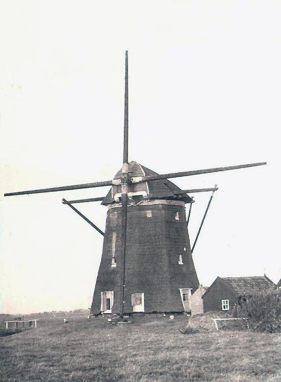 Hondsdijkse Molen, Koudekerk a/d Rijn, De scheefgezakte molen nog als buitenkruier, in afwachting van de broodnodige restauratie.  Foto n.n., datum onbekend (ingezonden door Martin E. van Doornik).