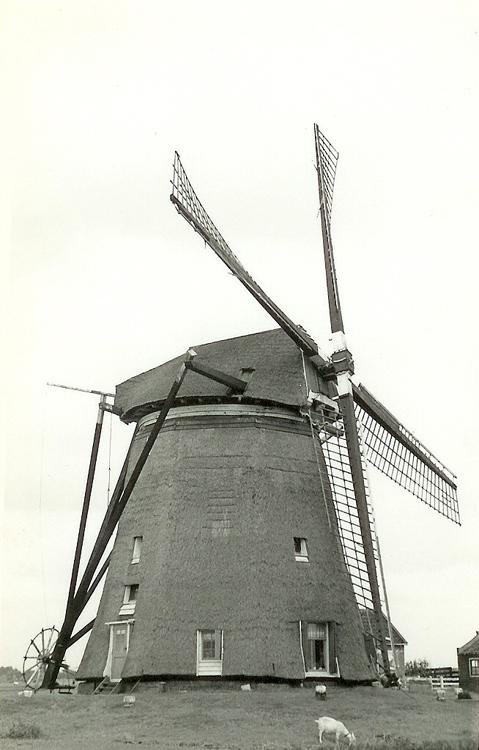Hondsdijkse Molen, Koudekerk a/d Rijn, De molen toen nog als buitenkruier.  Foto: Huib de Graaf (1965), ingezonden door Martien de Graaf, die daar 25 jaar molenaar was.