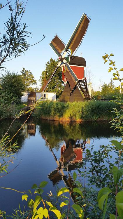 Kikkermolen, Leiden, Foto: Joram Wijling (15-6-2014).