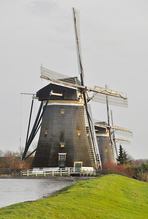 Bovenmolen (van de Driemanspolder), Leidschendam, De molendriegang met op de voorgrond de Bovenmolen. De oplettende kijker ziet de scheefstand van de Middenmolen.  Foto: Leo Middelkoop (25-12-2013).